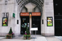 Franchia Vegan Cafe New York